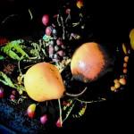 Spotlit Pears